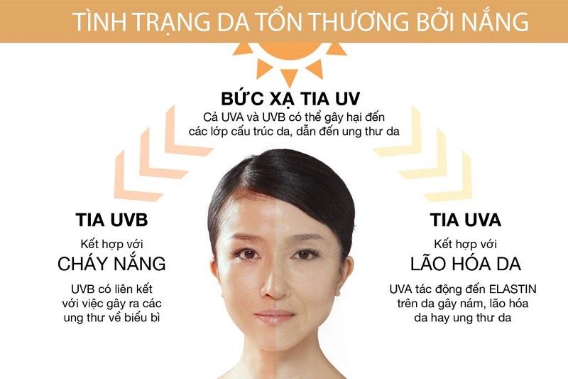 Tác hại của tia UV đối với da - ảnh: internet