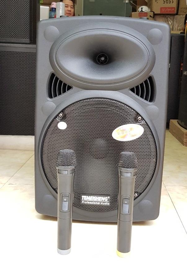 Loa-karaoke-di-dong-temeisheng